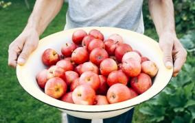 Manger bio et de façon équilibrée