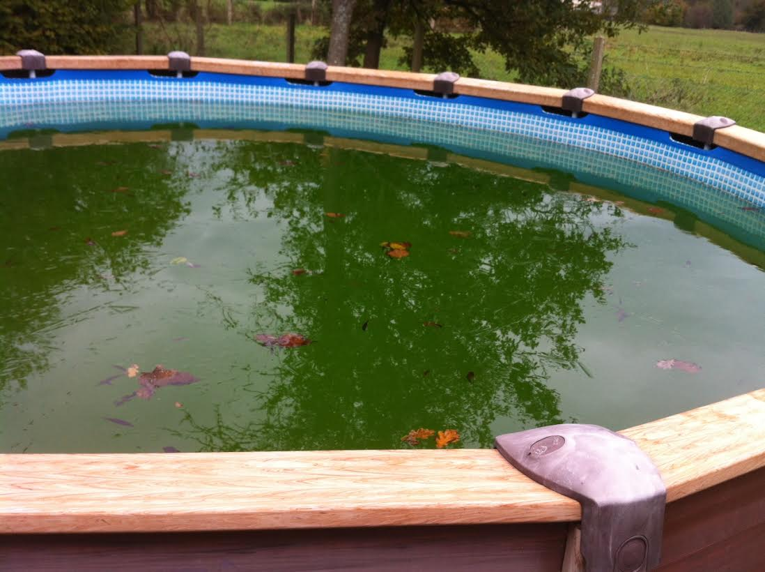 Que faire quand eau piscine verte for Eau piscine